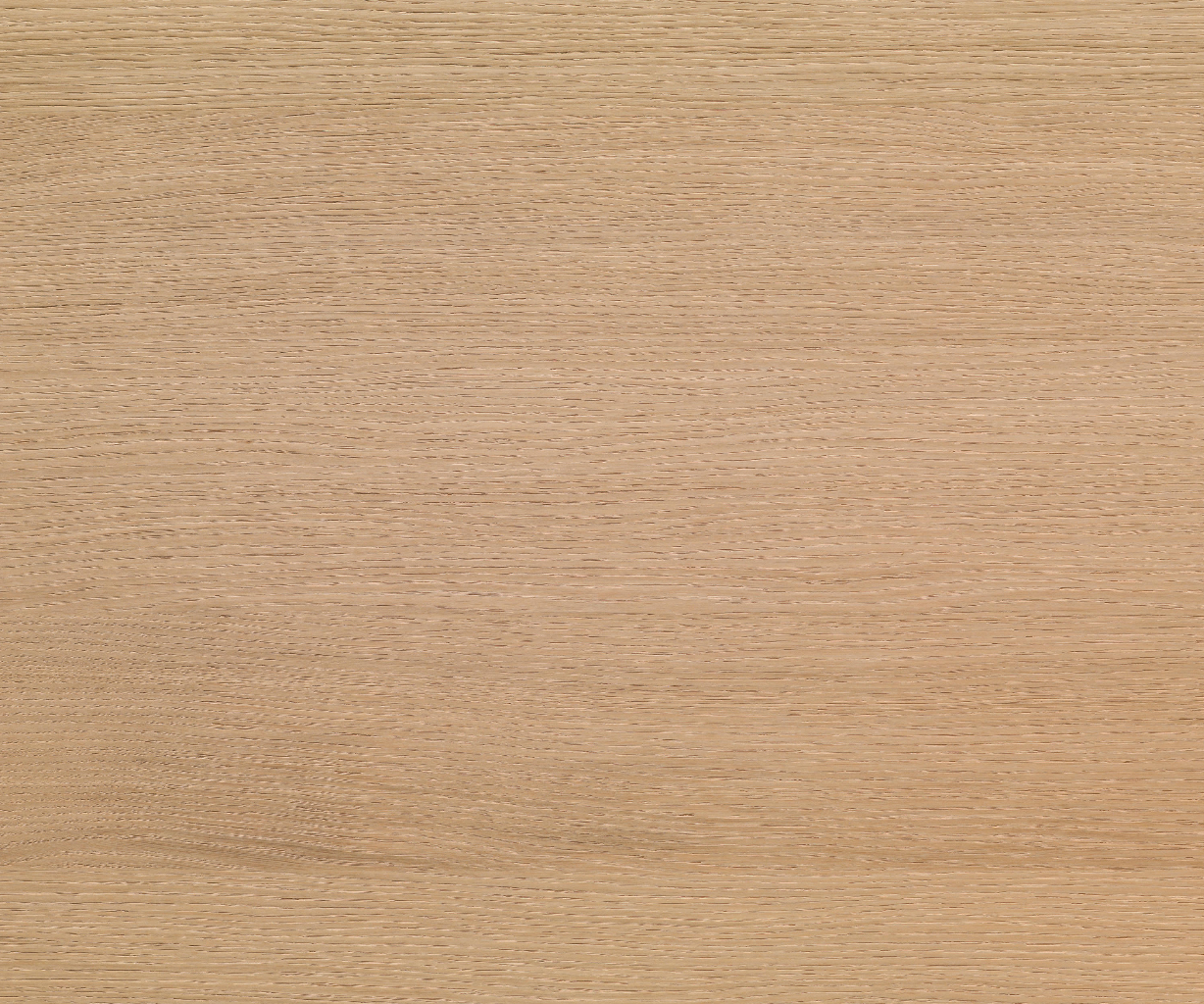 Shinnoki Ivory Oak